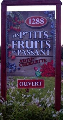 Les P'tits Fruits du Passant - Grocery Stores - 418-531-0517