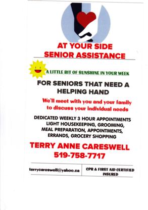 At Your Side Senior Assistance - Associations humanitaires et services sociaux - 519-758-7717