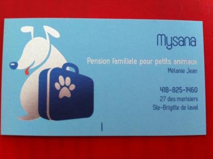 Mysana Pension Pour Animaux - Garderie d'animaux de compagnie