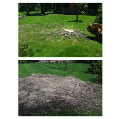 JEM Services - Tree Service - 905-932-8893