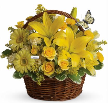 Boite à Fleurs - Fleuristes et magasins de fleurs - 418-275-4989