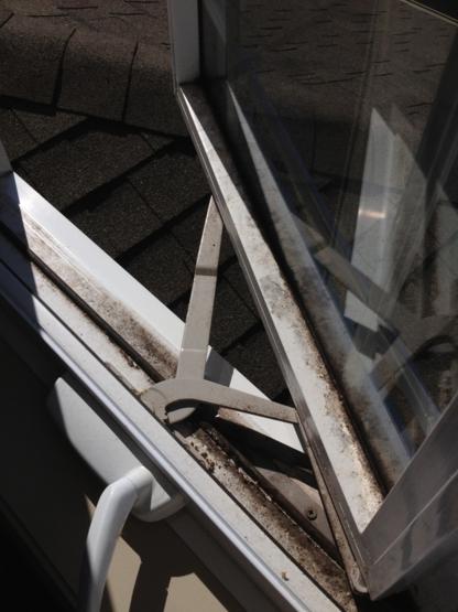 View Diamond Window Cleaning's Belleville profile