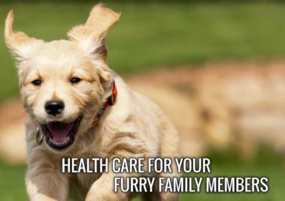 Oakridge Animal Clinic - Veterinarians