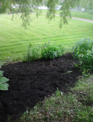 Wile's Lawn Care - Lawn Maintenance - 902-790-4573