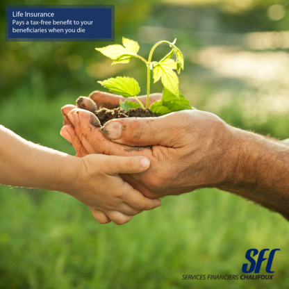 Services Financiers Chalifoux - Life Insurance - 514-505-6999