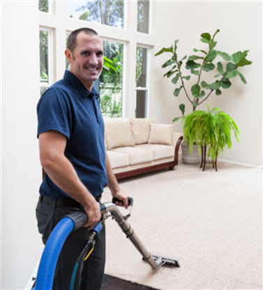 Cleaners On The Move - Carpet & Rug Cleaning