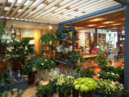 Fleuriste San Remo - Florists & Flower Shops - 514-376-6901
