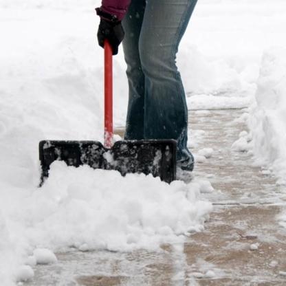 Snow Wrangler - Snow Removal