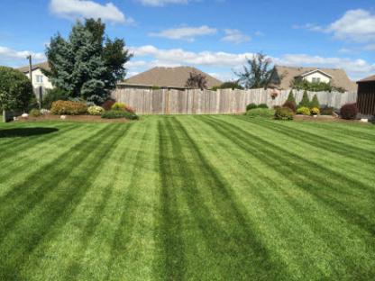 Dale's Lawn and Landscape - Landscape Contractors & Designers - 519-291-2242