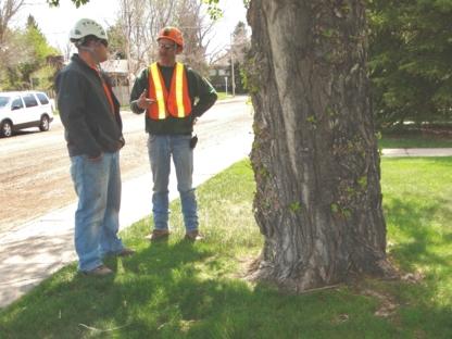 Grant's Plants - Service d'entretien d'arbres - 403-327-9109