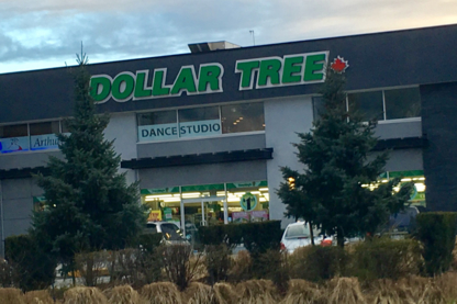 Dollar Tree - Discount Stores