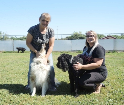 Richmond Dog Boarding and Play - Kennels - 604-370-3647