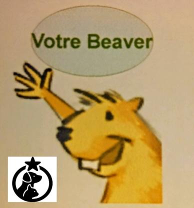 Votre Beaver - Liane Plante Maitre Chien Présidente Fondatrice - Garderie d'animaux de compagnie - 438-380-8989