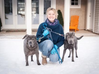Mutt Cuts Dog Salon - Toilettage et tonte d'animaux domestiques - 902-478-3649