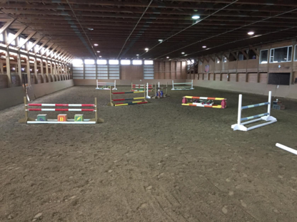 Five Star Farms - Equestrian Services