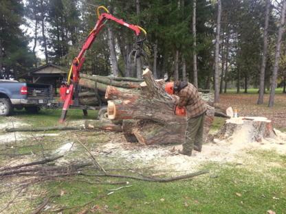 Forestier ASL - Tree Service - 450-750-8716