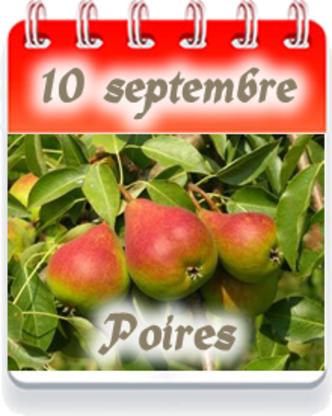 Fraisière Du Verger Pierre Tremblay & Fils - Producteurs et distributeurs de fruits et légumes - 450-347-6336