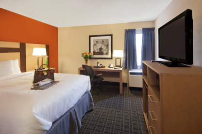 Canadas Best Value Inn - Hotels - 416-255-5500
