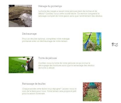 Éconotonte - Lawn Maintenance