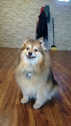 Calgary Dog House - Pet Care Services - 403-455-3647
