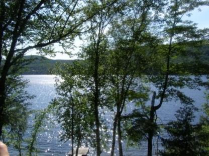 Abattage d'arbres LCL - Tree Service - 450-821-8220