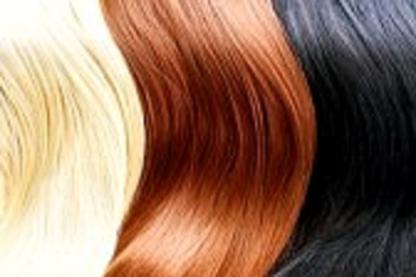 Haircraft - Salons de coiffure et de beauté - 905-845-7671