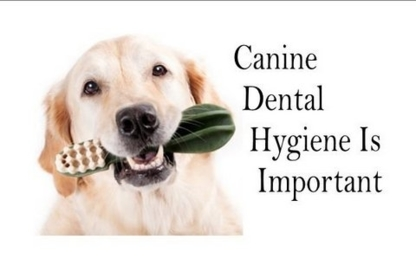 Heather's Pet Oral Care & Spaw - Pet Care Services - 250-923-1460
