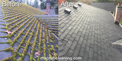 MacNab Exterior Cleaning - Building Exterior Cleaning