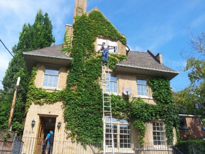 White Shark Window Cleaning - Eavestroughing & Gutters