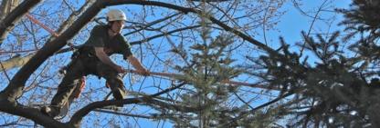 Daniel et Sylvie Les Services Forestiers - Tree Service