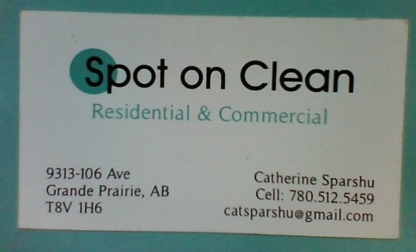 Spot On Clean - Dry Cleaners - 780-512-5459