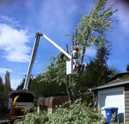 Sullivan Tree Service Ltd - Tree Service - 403-247-1596