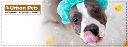 Urban Pets - Veterinarians - 604-455-9389