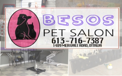 Besos Pet Salon - Pet Grooming, Clipping & Washing - 613-716-7387