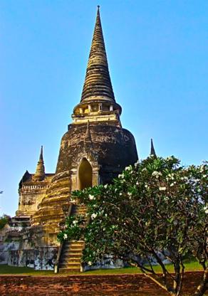 Baan Thai Massage Inc - Registered Massage Therapists
