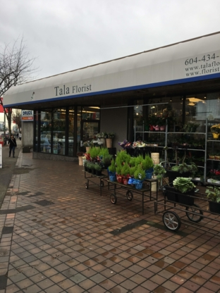 Tala Florist - Florists & Flower Shops