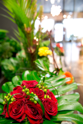 Mimosa Fleurs & Cadeaux - Fleuristes et magasins de fleurs - 450-250-5252