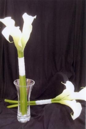Floral Classics - Florists & Flower Shops - 416-491-1566