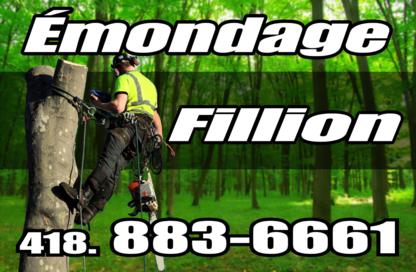 Emondage Fillion - Tree Service - 418-883-6661