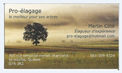 Pro-Élagage - Tree Service - 581-309-5324