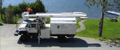 Arbor Experts - Tree Service - 819-688-5000