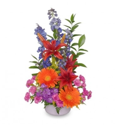 Mount Pearl Florist - Florists & Flower Shops - 709-364-4095