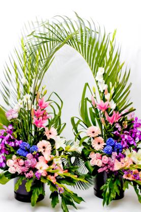 Fleuristes Anthopolis - Florists & Flower Shops - 514-745-5552