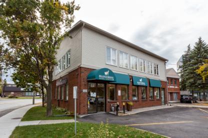 Voir le profil de Billings Bridge Animal Hospital - Rockcliffe