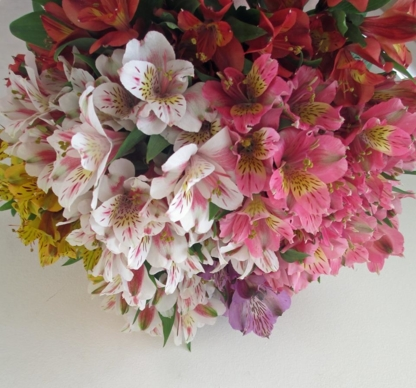 Willow Park Florist - Accessoires et organisation de planification de mariages
