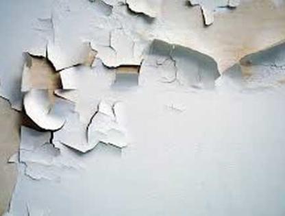 Canadian HAZ-MAT Environmental Ltd - Asbestos Removal & Abatement