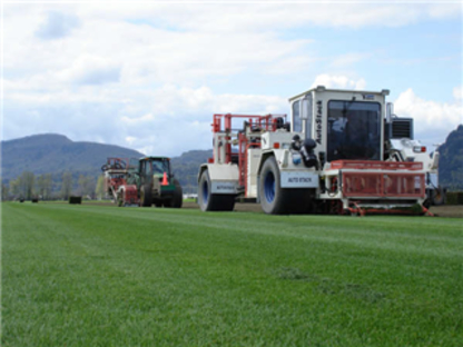 Western Turf Farms Ltd - Sod & Sodding Service - 250-765-5840