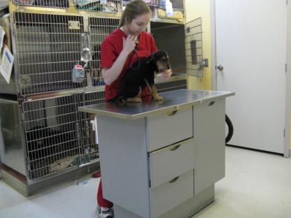 Coast Mountain Veterinary Services - Veterinarians - 604-932-5391