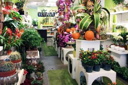 Flowerz Co - Florists & Flower Shops - 604-742-1000