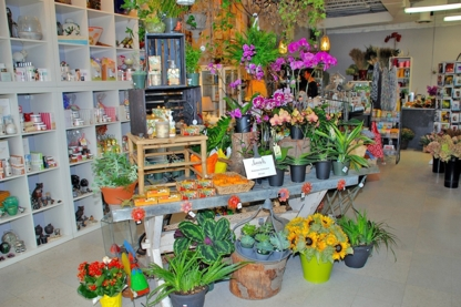 Laurel's On Whyte - Florists & Flower Shops - 780-431-0738
